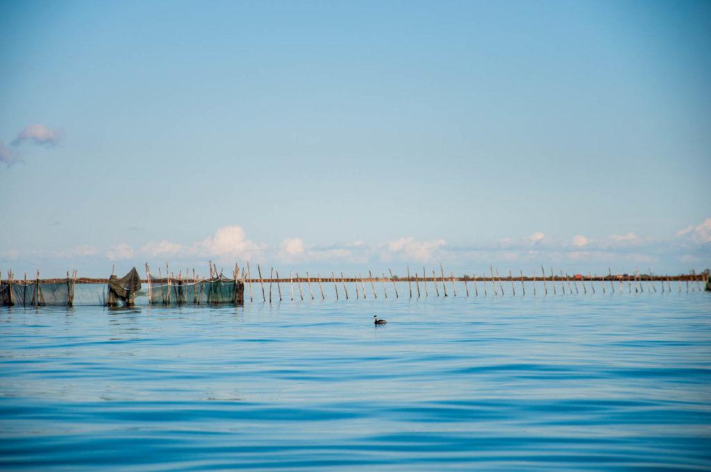 Laguna Wenecka z kajaka